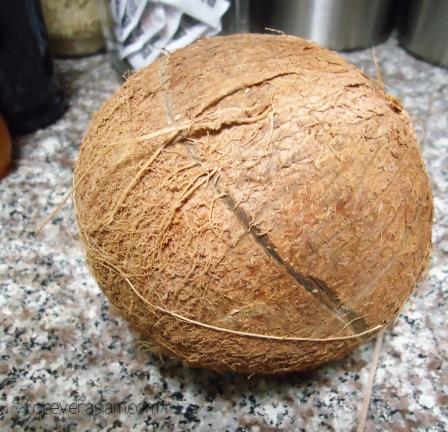 coconutmilkdc 002